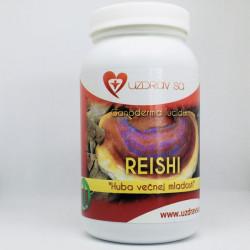 Reishi huba – 100g prášok